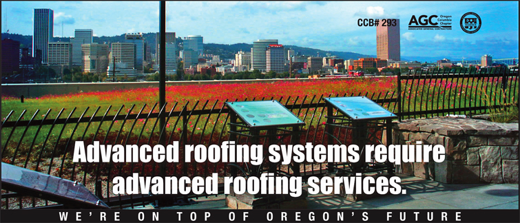 Perfect Anderson Roofing